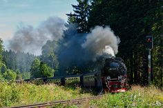 trees station train germany wagon deutschland smoke rail steam historical locomotive rook bahn harz trein semaphore duitsland dampflokomotive historisch stoom stoplicht hsb dampf stoomlocomotief dreiannenhohne seinpaal 9972365 bracom harzerschmallspurrbahn bramvanbroekhoven