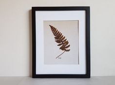 Pressed flower art print 11x14 matted print from one of my