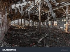 Landscape With Ruins Of Old Industrial Buildings For Farm Animals. Interior Of An Abandoned Pigsty Plunder And Waste. The Collapse Of Economy. Selective Focus. As Background For Design Of Crisis 库存照片 375849472 : Shutterstock