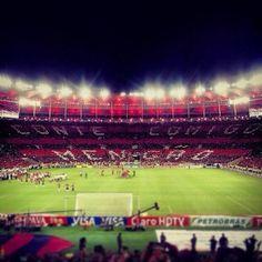 Somos uma nação! Torcida do Flamengo