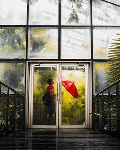 #Repost @35waves  R A I N H O U S E A re-edit of one of my favorite shots. Thanks again red umbrella stranger for the perfect timing! via Fujifilm on Instagram - #photographer #photography #photo #instapic #instagram #photofreak #photolover #nikon #canon #leica #hasselblad #polaroid #shutterbug #camera #dslr #visualarts #inspiration #artistic #creative #creativity