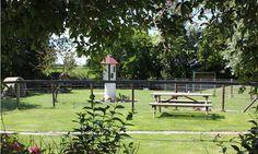 De kinderboerderij op FarmCamps Mariekerke