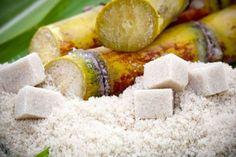 The Not-So-Sweet History of Sugar Part I-John Douillard Ayurveda, History Of Sugar, Voyage Reunion, Raw Food Recipes, Healthy Recipes, Sugar Beet, Genetically Modified Food, Sugar Alternatives, Processed Sugar