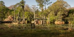 These Photos Of An Abandoned Disney World Water Park Will Totally Creep You Out Abandoned Disney Park, Abandoned Amusement Parks, Abandoned Places, Abandoned Homes, Abandoned Buildings, Disney World Water Parks, Disney World Florida, Walt Disney World, Creepy Images