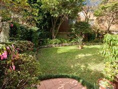 Landscaped garden design using grass with retaining wall & latticework fence - Gardens photo 286140