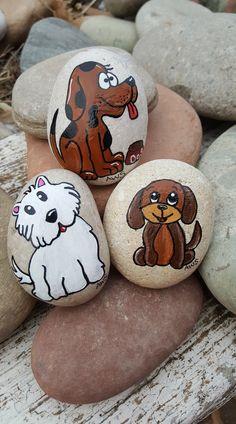 Puppy rocks