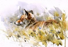 View Lucy Newton's Artwork on Saatchi Art. Find art for sale at great prices from artists including Paintings, Photography, Sculpture, and Prints by Top Emerging Artists like Lucy Newton. Watercolor Artists, Watercolor Animals, Watercolor Paintings, Watercolors, Hippo Drawing, Nature Illustration, Cute Fox, Mixed Media Painting, Selling Art