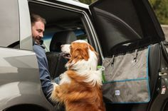 Sedans, Dog Travel, Car Covers, Amazing Destinations, New Product, Mud, Your Dog, Compact, Car Seats