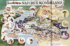 Ride the Mine Train thru Nature's Wonderland Map | Imagineering Disney