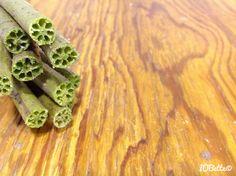 Lotus Pod Stems Lotus Pods, Seed Pods, Stems, Asparagus, Vegetables, Tattoos, Drift Wood, Trunks, Studs