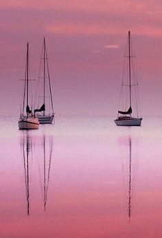 PINK, a beleza de uma cor.