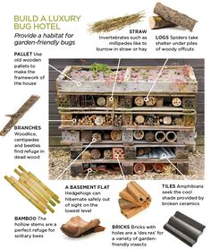 Image result for bug hotel with pallets and wild plant on top