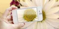 How to take amazing macro photos with your iPhone | iMore.com