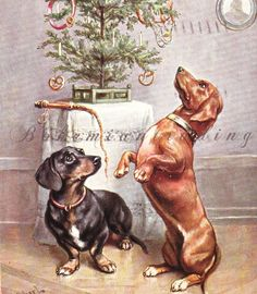 Antique Christmas Postcard. Dachshunds Staring at Christmas Tree w/ Sausages Pretzels & Dog Collars. Germany 1910s Collectible. by bohemiantrading on Etsy https://www.etsy.com/listing/249059763/antique-christmas-postcard-dachshunds