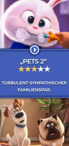 """""""Pets 2"""" ist ein Schnellschuss nach dem Smash-Hit """"Pets"""" von 2016. Etwas zusammengeschustert, aber dennoch unterhaltsam. Und vor allem ein Spaß für junge Kinofans! Die ganze Kritik gibt's auf filmstarts.de! Jan Josef Liefers, Pets, Snowman, Disney Characters, Fictional Characters, Teddy Bear, Animals, Movie, Cinema"""