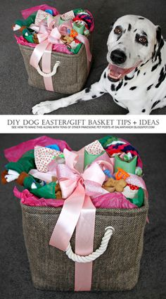How to put together an easter basket for your dog easter baskets assembling a diy dog easter or any occasion gift basket negle Image collections