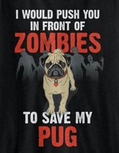 My Pug is more important!