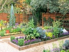simple raised garden with gravel paths