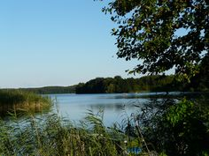 Feldberger Seenlandschaft Seen, Felder, Europe, River, Mountains, Nature, Outdoor, Scenery, Outdoors