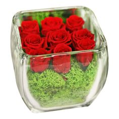 Preserved red rose arrangement in a glass cube vase.     Product: Preserved floral arrangement Construction Material: