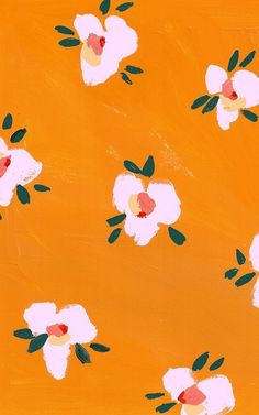 pink flowers on orange background