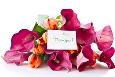 Say Thanks with Orchids. Thank You Wishes, Thank You Flowers, Tank You, Orchids, Congratulations, Place Cards, Thankful, Place Card Holders, Birthday