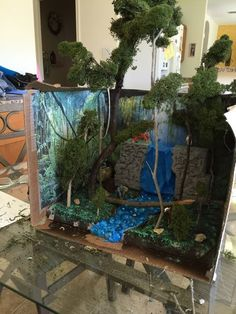 Picture of Rain Forest Diorama Rainforest Project, Rainforest Habitat, Amazon Rainforest, Biome Project, Rainforest Crafts, Rainforest Animals, Rain Forest Diorama, Diorama Kids, Ecosystems Projects