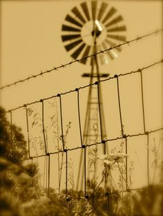 """My first tattoo will be a windmill.   """"A windmill represents the power of movement and stimulating force. In general, as wind symbolizes the mind, the windmill represents the proper use of intellectual abilities.""""  -Anonymous"""