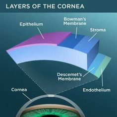 Fuchs' corneal dystrophy is a disorder of the front surface of the eye (cornea) that usually affects older adults. Here are seven key facts about Fuchs' dystrophy you should know. Diseases Of The Eye, Strawberry Health Benefits, Eye Anatomy, Toenail Fungus Treatment, Nail Treatment, Eye Facts, Eye Vitamins, Eye Sight Improvement, Eyes