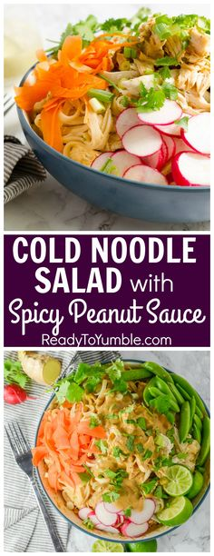 Cold Noodle Salad with Spicy Peanut Sauce is fresh and tasty for late ...