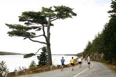 Mount Desert Island Marathon - Maine