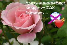 No busco un momento contigo. ¡Contigo quiero TODOS los momentos......!
