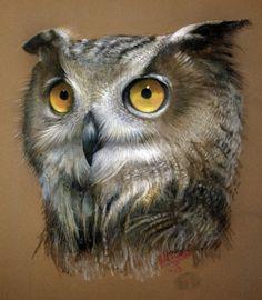 Owl by John Willis on ARTwanted