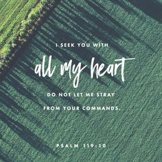 """""""With my whole heart have I sought thee: O let me not wander from thy commandments."""" Psalms 119:10 KJV http://bible.com/1/psa.119.10.kjv"""