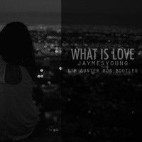 Jaymes Young - What Is Love (Tim Gunter 808 Bootleg) by timgunter on SoundCloud