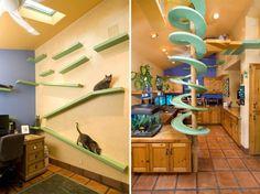 Katzenmöbel Küche