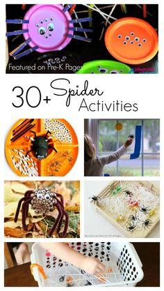 More than 30 activities for teaching and learning about spiders at home or in the classroom. Fun spider activities for kids!