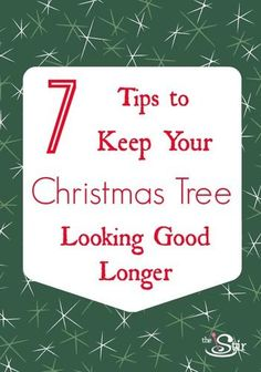 1000 Images About Christmas Tree Tips Keeping Your Tree