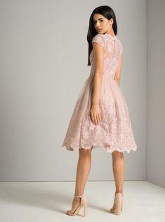Chi chi liviah dress lace dresses in 2019 платья, вечерние п Formal Dresses With Sleeves, Formal Dresses For Weddings, Knee Length Dresses, Cute Dresses, Beautiful Dresses, Short Dresses, Dressy Dresses, Bridesmaid Dresses, Prom Dresses