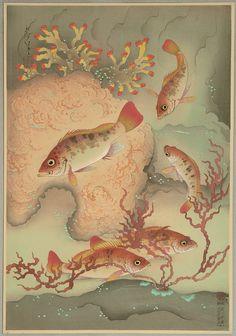 Bakufu Ono, 1888-1976 Fish