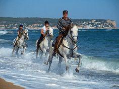 Me gusta el contraste de ésta foto y el movimiento del agua con los movimientos de los caballos.
