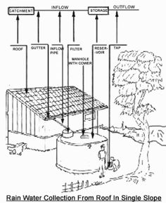 Free your water fundamentals of a rainwater harvesting for First flush diverter plans