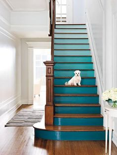 Give stairs a lift: Paint the risers in graduated shades of a single color, going a bit lighter after every three steps for an ombré effect. Start with one saturated shade and cut it with 20 percent white each time you lighten up. | Get the look here with @olympicfinishes Semi-Gloss Paint in Caribbean Splash available at @lowes
