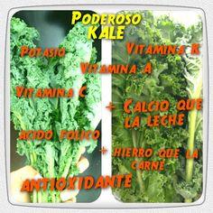 El maravilloso mundo del Kale