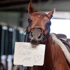 :) Beau would absolutely do this x)