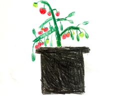 Dyrke rett i jordfabrikken - bokashinorge. Bokashi, Planter Pots, Christmas Ornaments, Holiday Decor, Home Decor, Compost, Decoration Home, Room Decor, Christmas Jewelry
