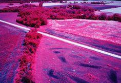 Wetlands of the central Plains, U.S.
