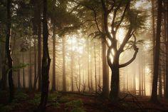 paisagem-conto-de-fadas-irmaos-grimm-9