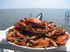 Crabbing in Virginia Beach