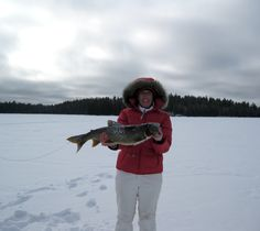 What a nice Lake Trout
